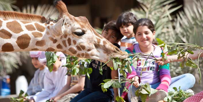 With Room Choices@Emirates Park Resort & Zoo