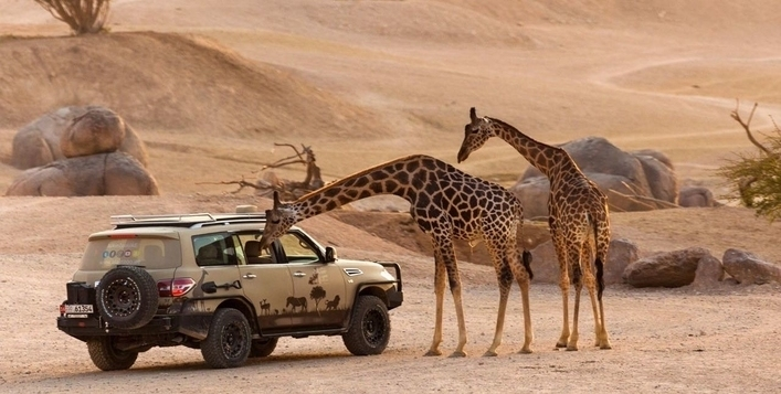 Optional 4x4 Safari available