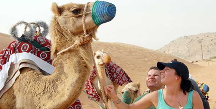 Camel riding, sunset photo, dinner & more