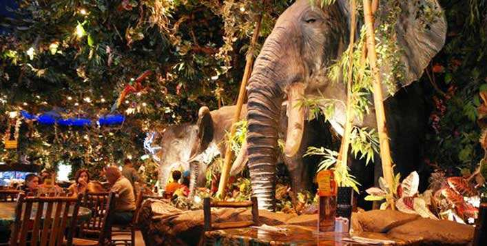 Rainforest Cafe, The Dubai Mall