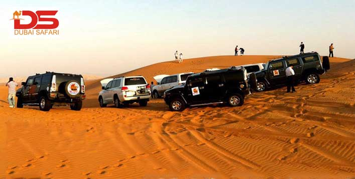 Desert Safari with Dinner, Shows & Transport
