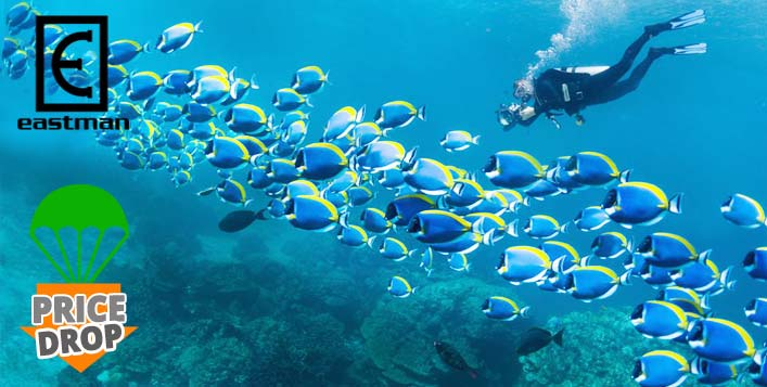 150-Minute Scuba Dive at Jumeirah Beach