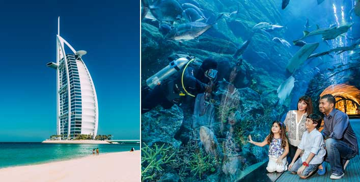 Dubai Aquarium, Underwater Zoo & City Tour