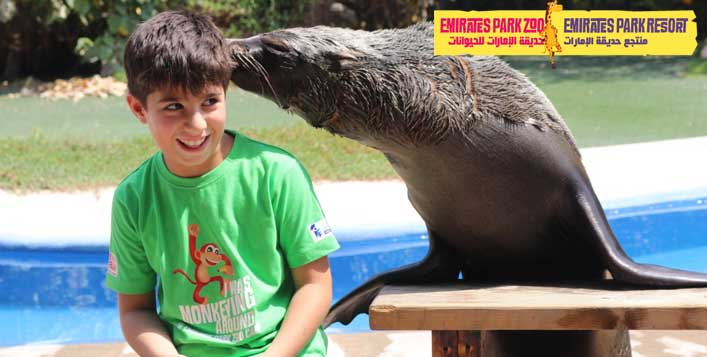 Animal encounter, feeding and more!