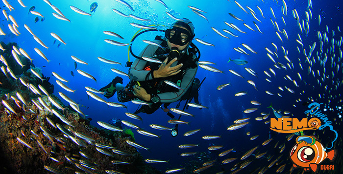scuba diving deals dubai